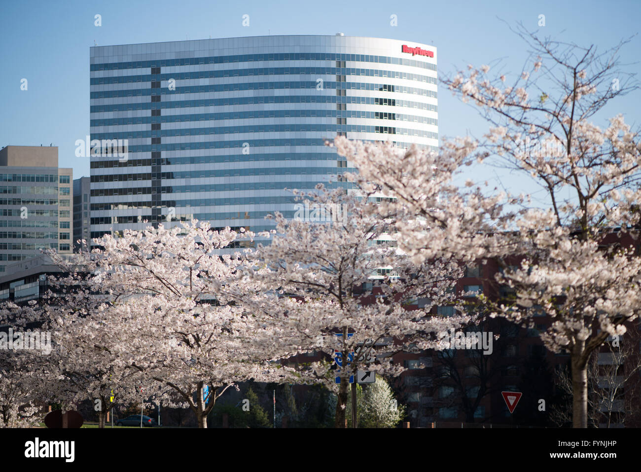 The prominent Raytheon building in Rosslyn, Arlington, Virginia, just across the Potomac River from Washington DC. - Stock Image