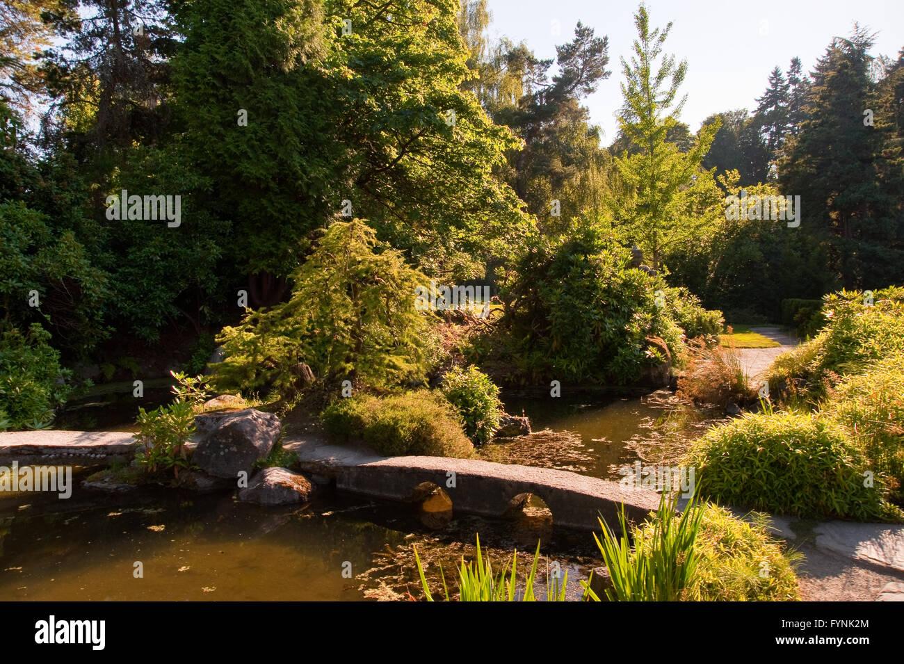 Kubota Garden in Seattle WA Stock Photo: 103123516 - Alamy