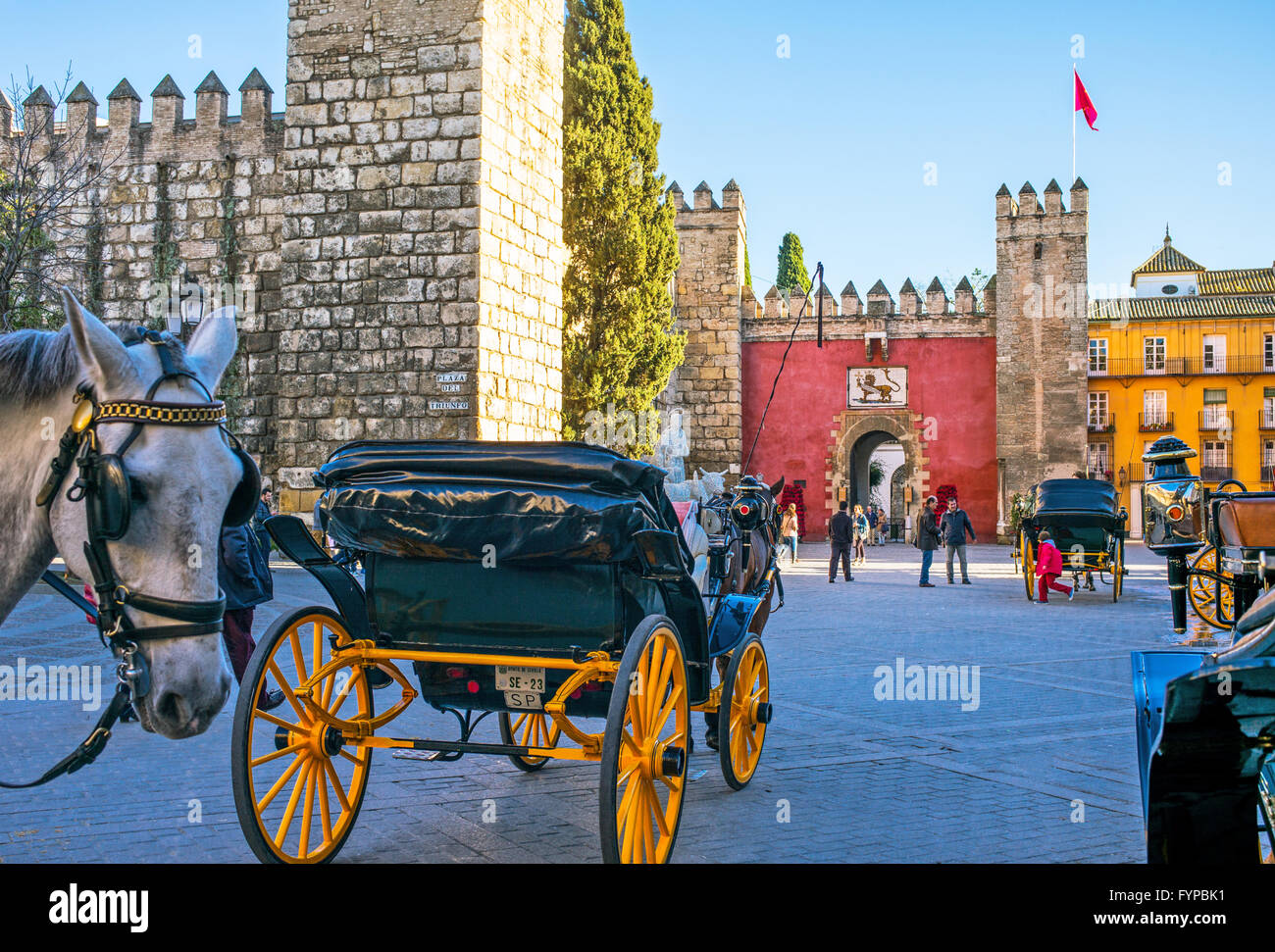 Spain, Andalusia, Seville, carriages in the Reales Alcazares square - Stock Image