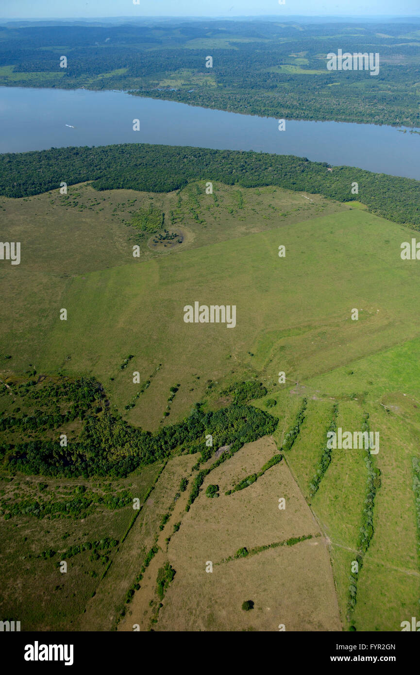 Aerial view, large scale clearing for pastures, Amazon rainforest on Rio Tapajos, Itaituba District, State of Para, - Stock Image