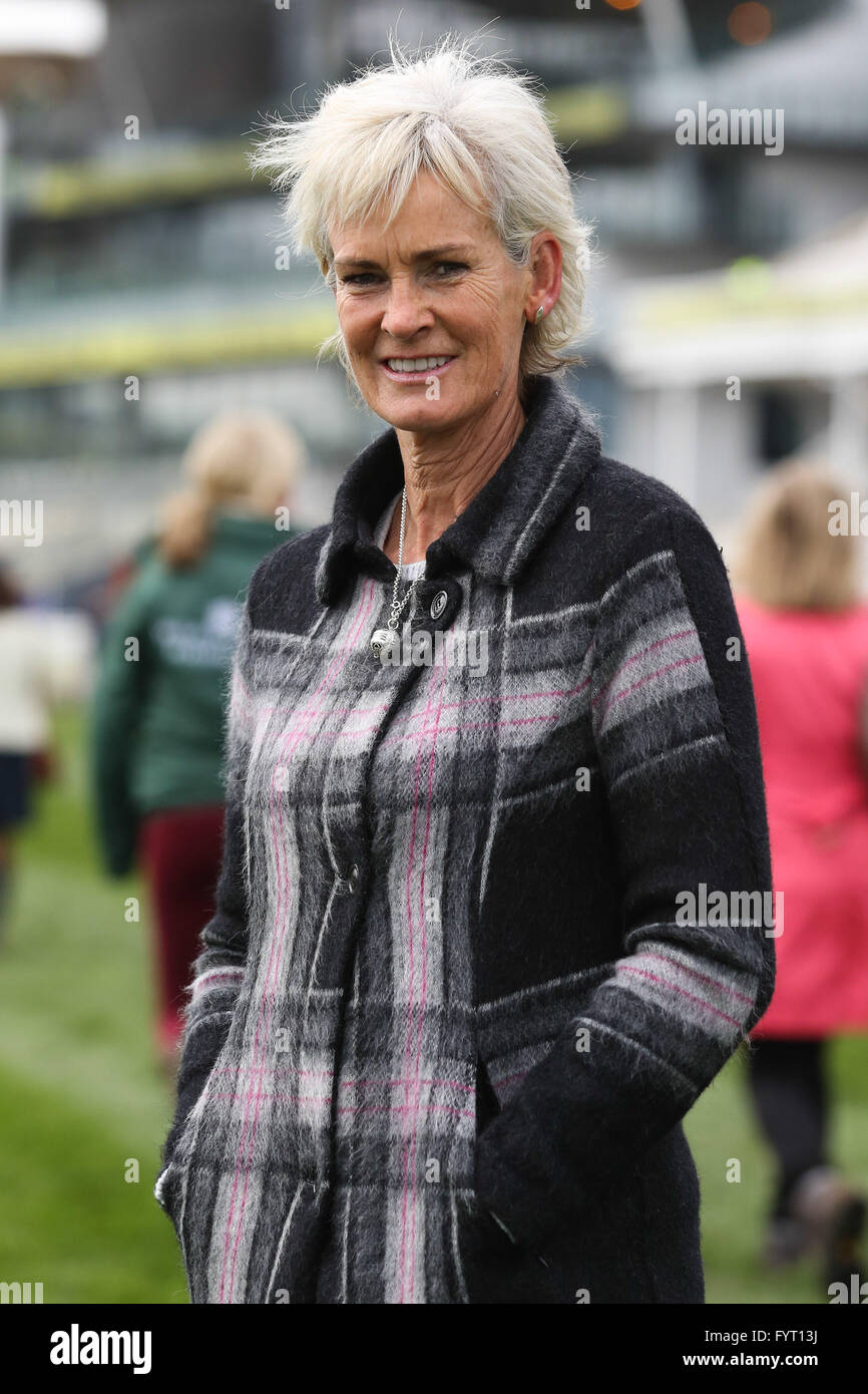 at the 2016 Grand National at AIntree Racecourse in Liverpool, UK. Stock Photo