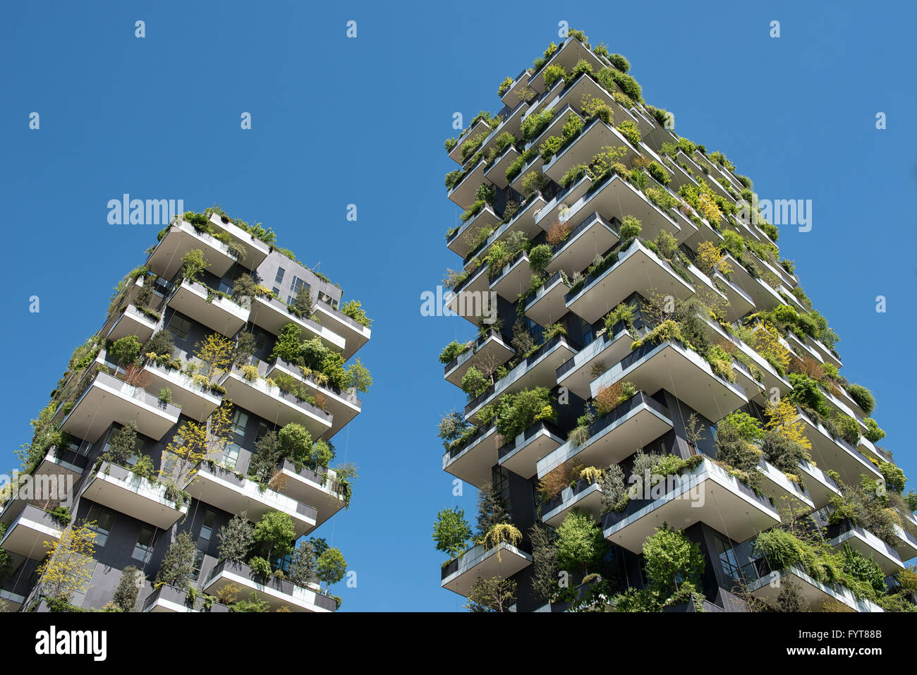 Low angle view on pair of unique tree and vine covered balconies of skyscrapers of Milan, Italy - Stock Image
