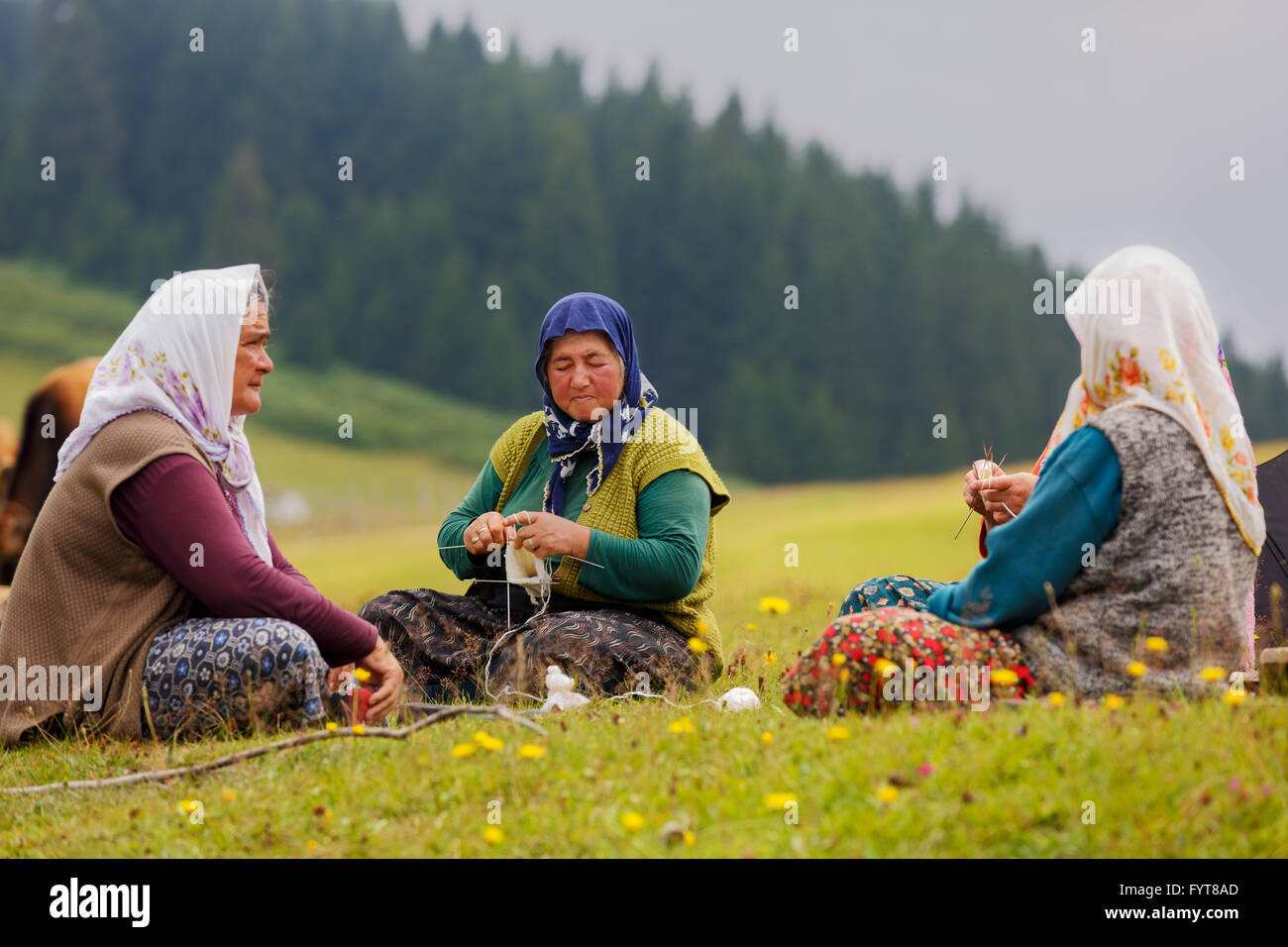 Traditionally dressed unidentified old women sit on the grass of beautiful plateau in rural areas of Giresun and - Stock Image