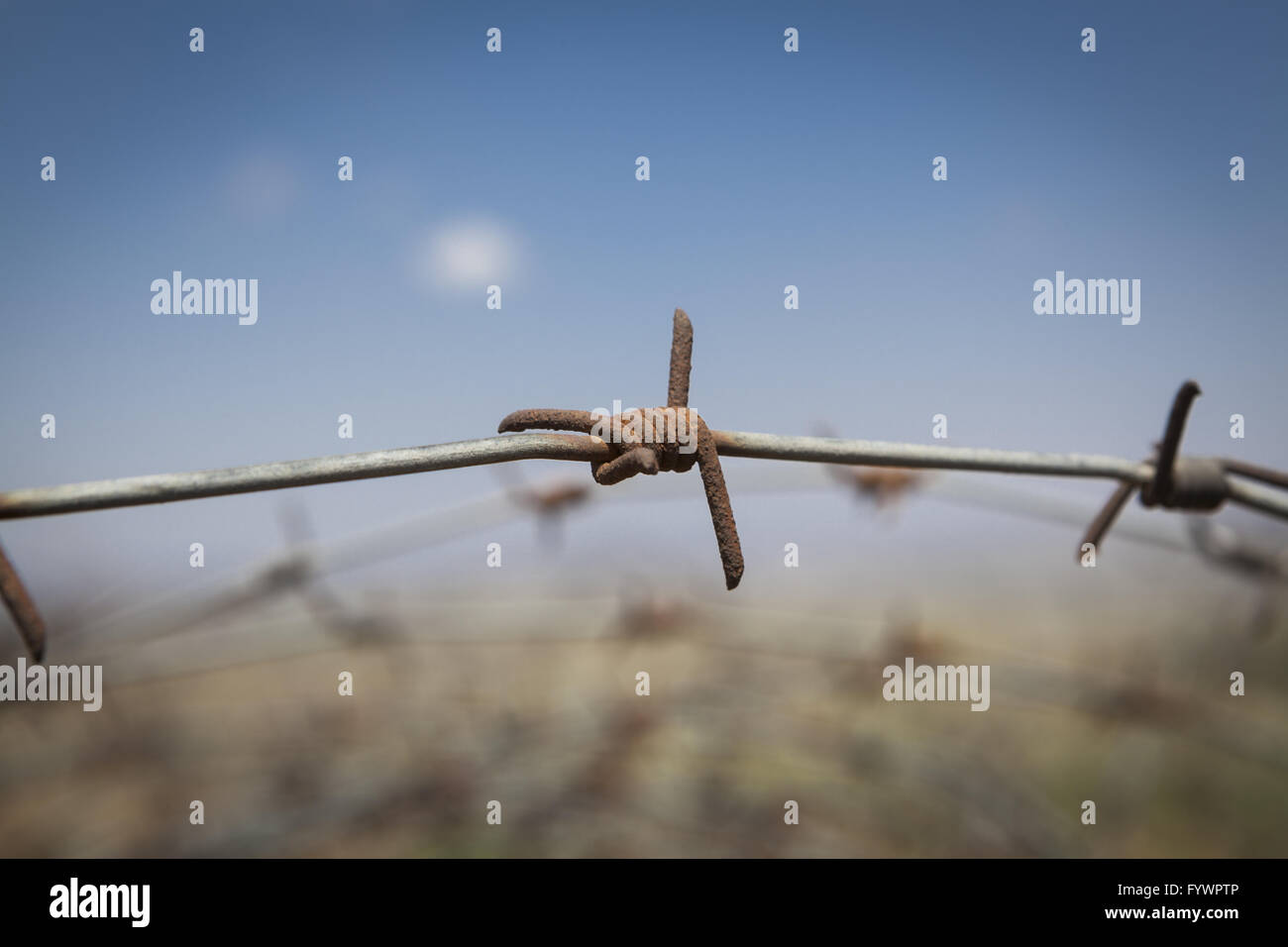 Rusted Barb Wire - Stock Image