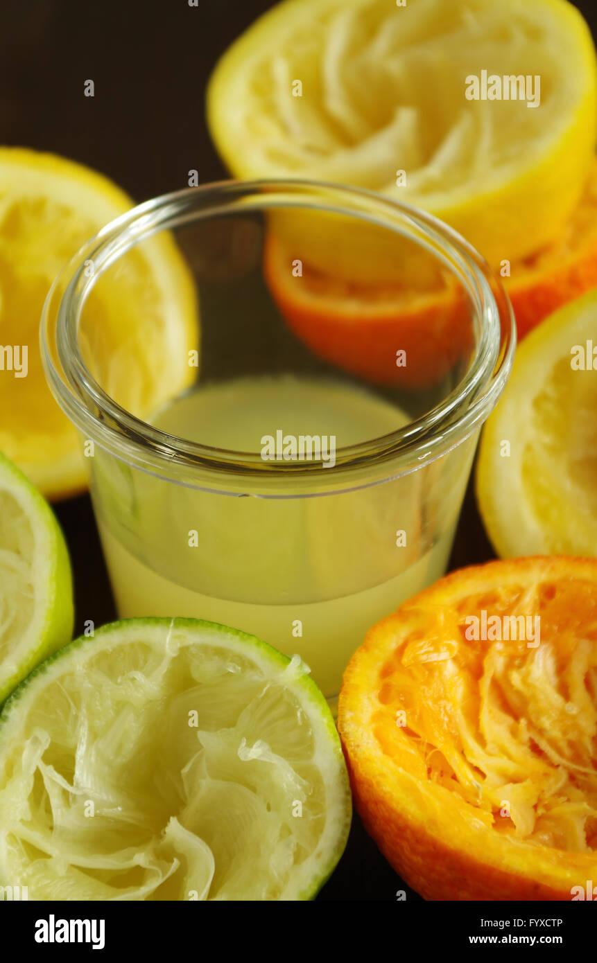 citrus fruits - Stock Image