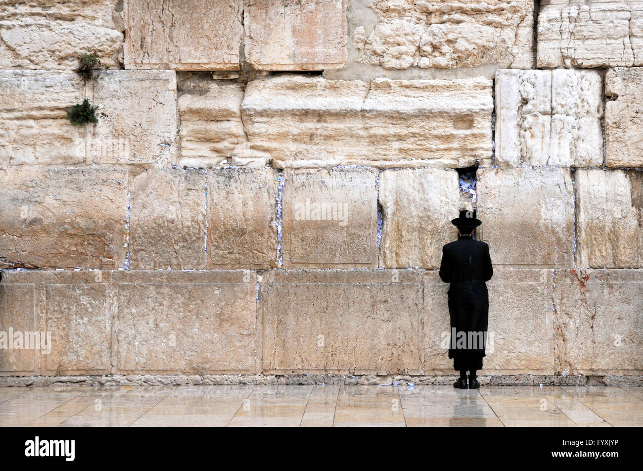 Jew, prayer, Wailing Wall, Temple Mount, Jerusalem, Israel / Kotel - Stock Image