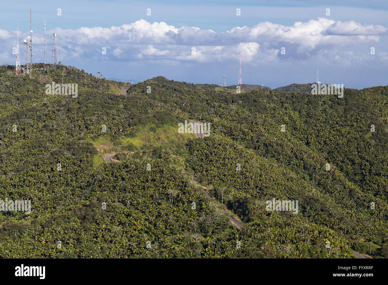 Jungles around Cerro de Punta, Puerto Rico, highest point Stock Photo
