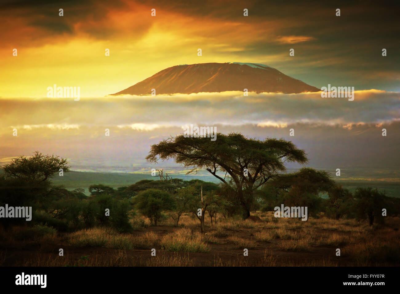 Mount Kilimanjaro. Savanna in Amboseli, Kenya - Stock Image