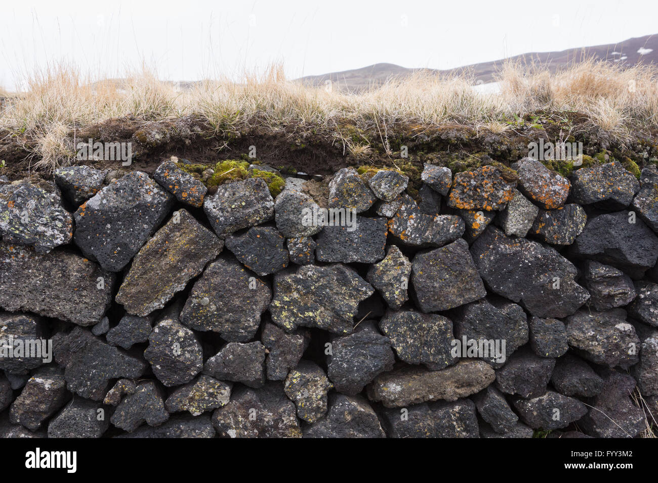 Basalt rock wall with turf and colourful moss in Iceland - Stock Image