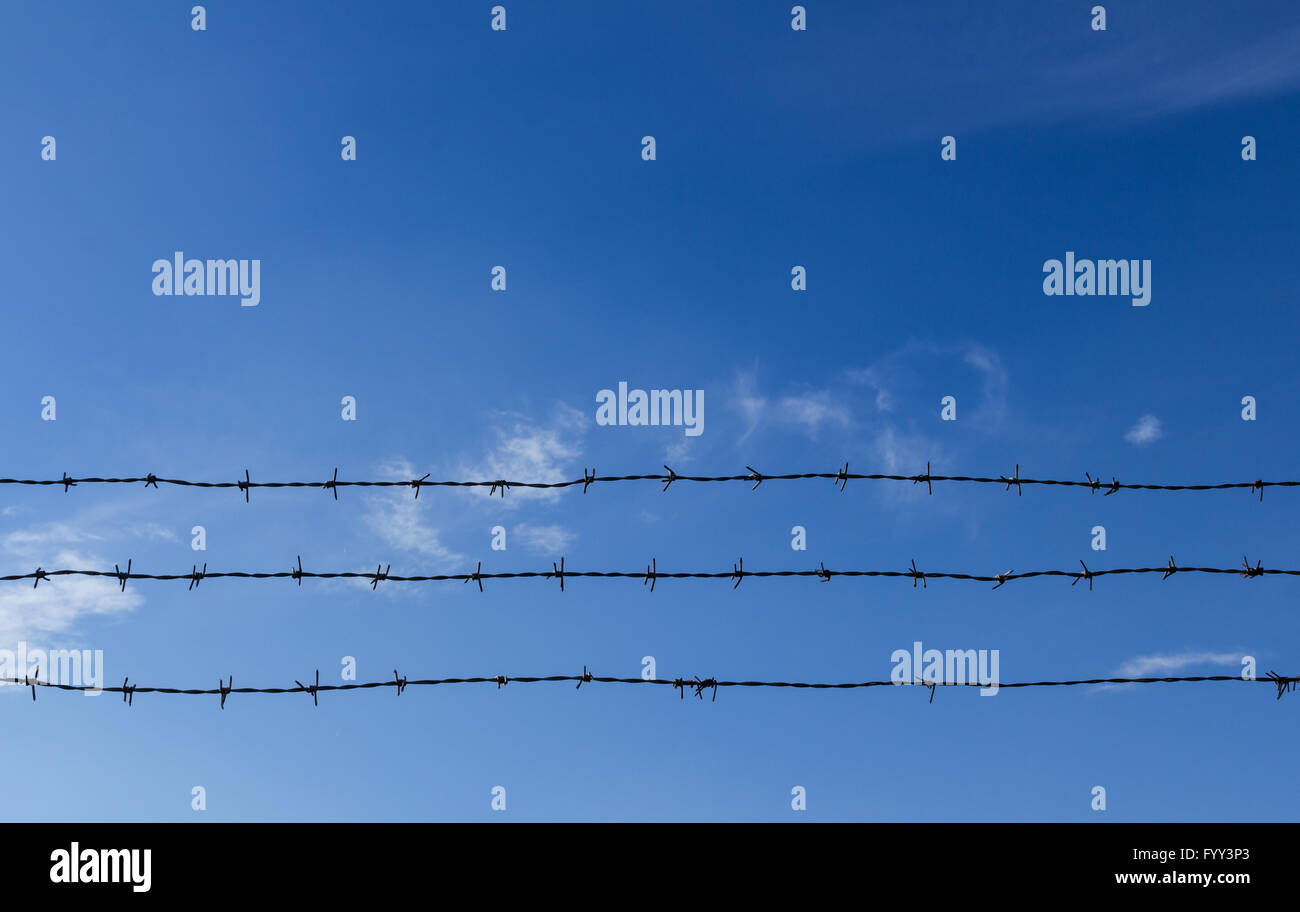 Barbed wire and blue sky with clouds - Stock Image