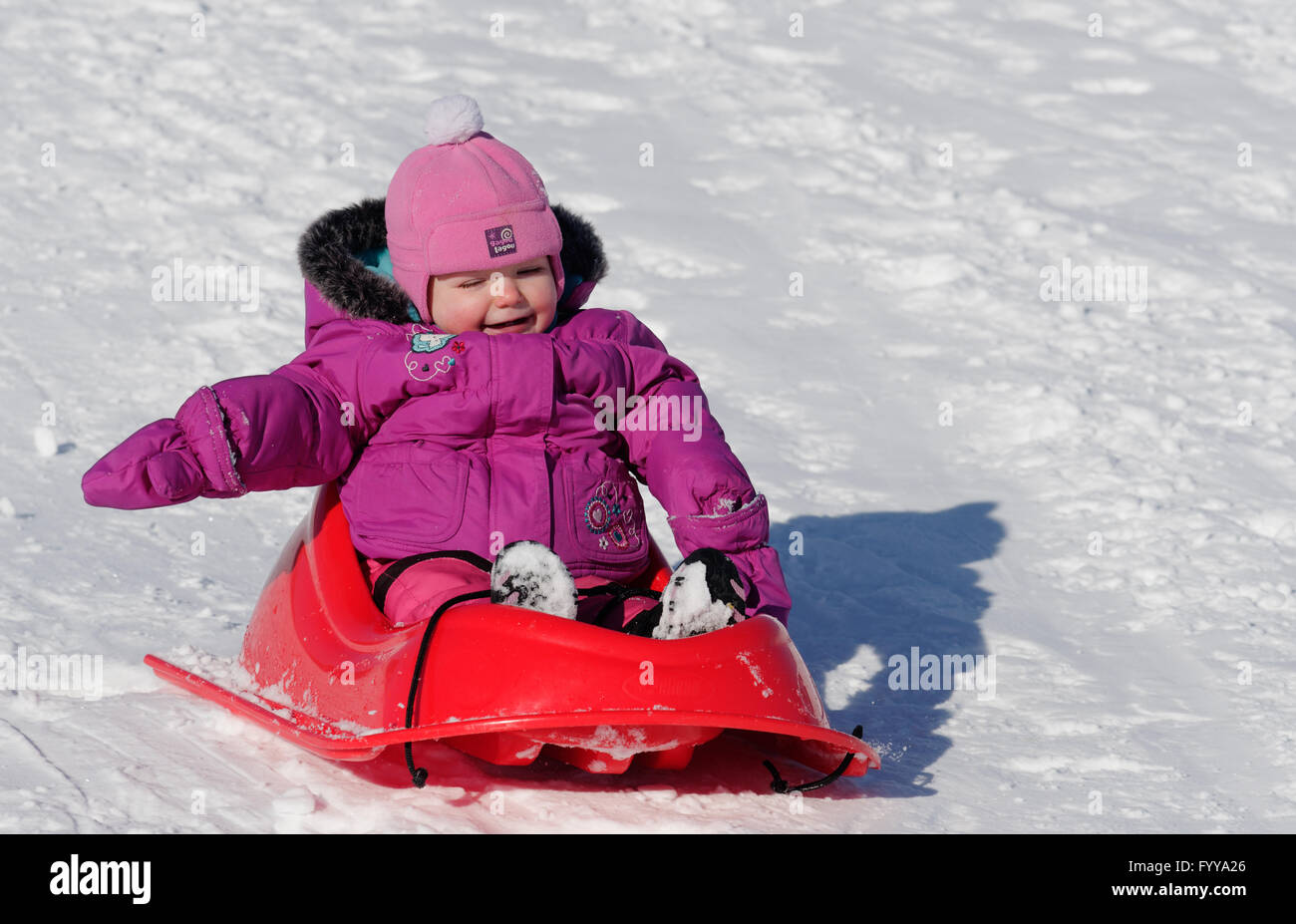 Laughing 2 year old girl in a sledge - Stock Image
