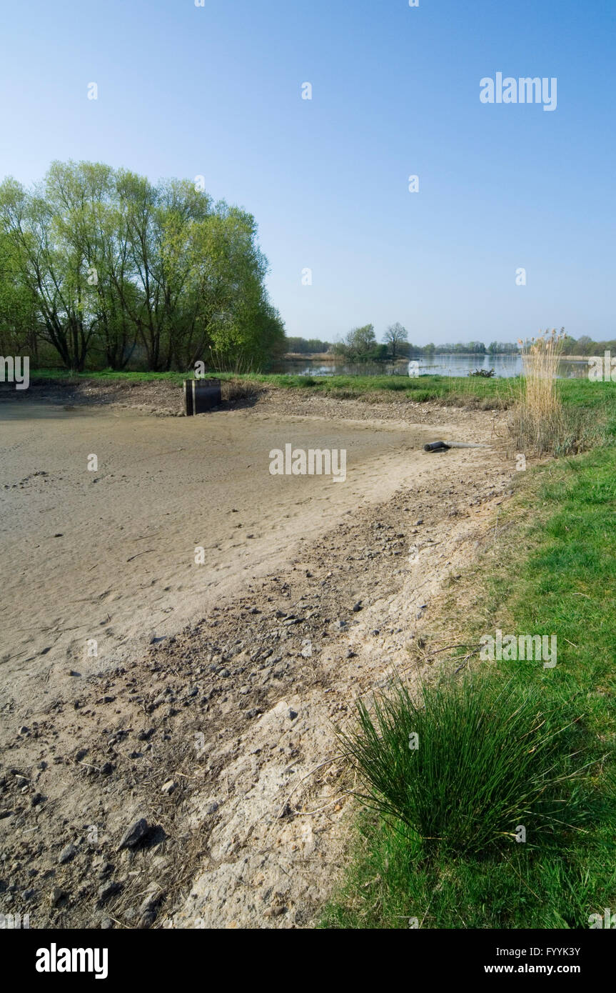 Drained lake / empty étang used for fish-farming in the Parc naturel régional de la Brenne, Indre, France - Stock Image