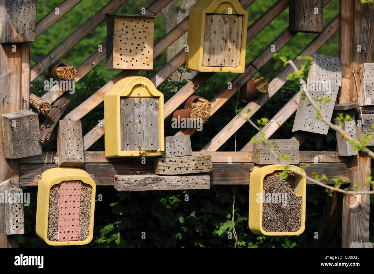 insect houses - Stock Image