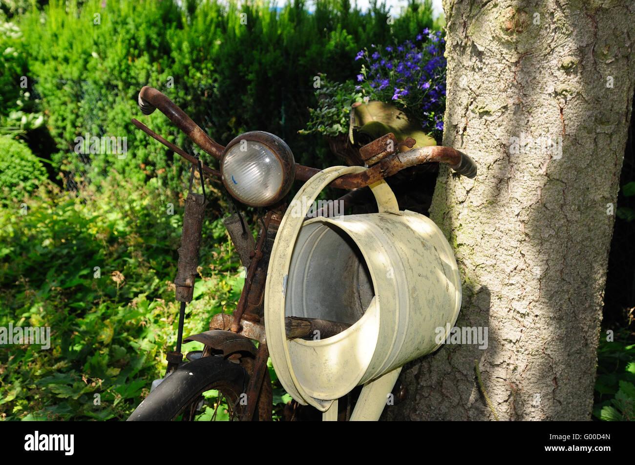 Sympathisch Gartentraum Ideen Von Old Bicycle In The Garden - Stock