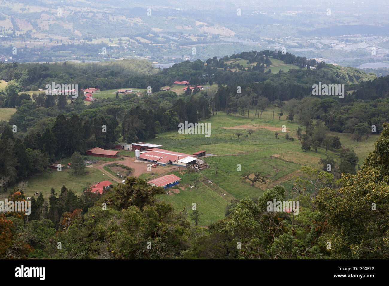 A dairy farm in Costa Rica. The verdant land in the Cordillera Central Mountain Range is fertile and productive. - Stock Image