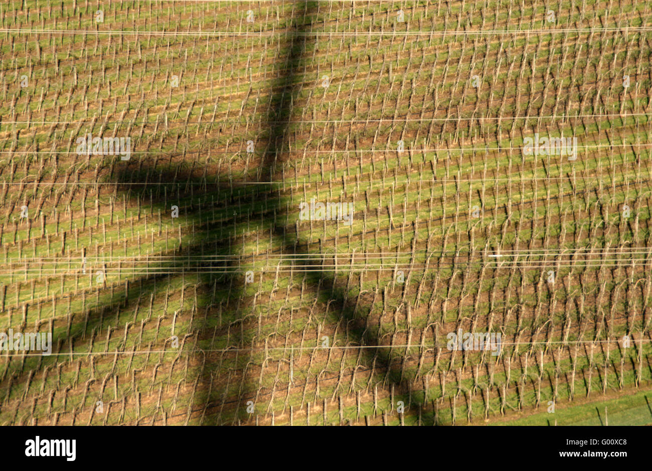 Shadow Of A Windmill / Windrad Schatten - Stock Image