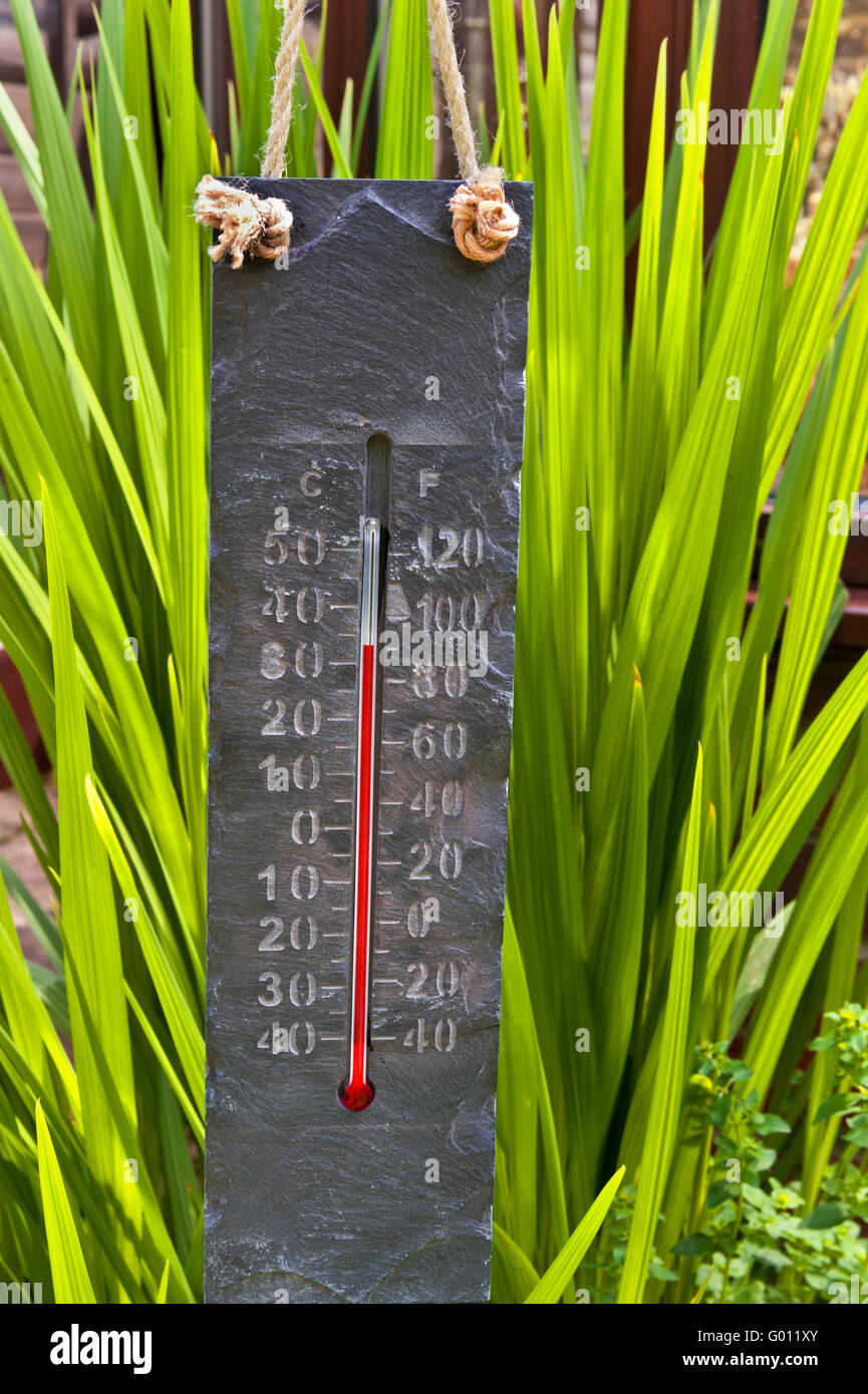 Sunlit stone carved themed thermometer at 35C in garden greenhouse - Stock Image