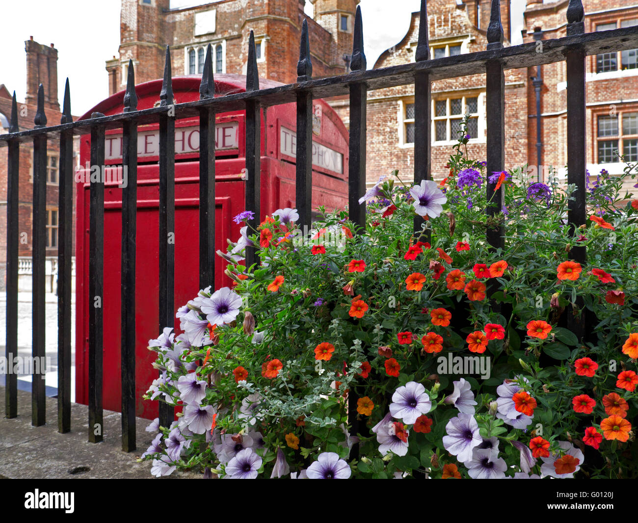 Summer petunias with red telephone box and Abbot's Hospital a Jacobean alms house behind Guildford Surrey UK - Stock Image