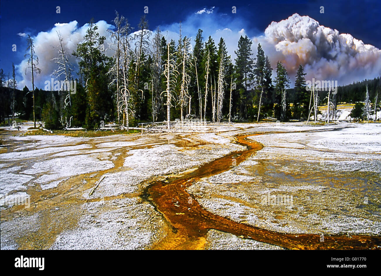 Yellow Stone NP Upper Geyser Basin Stock Photo