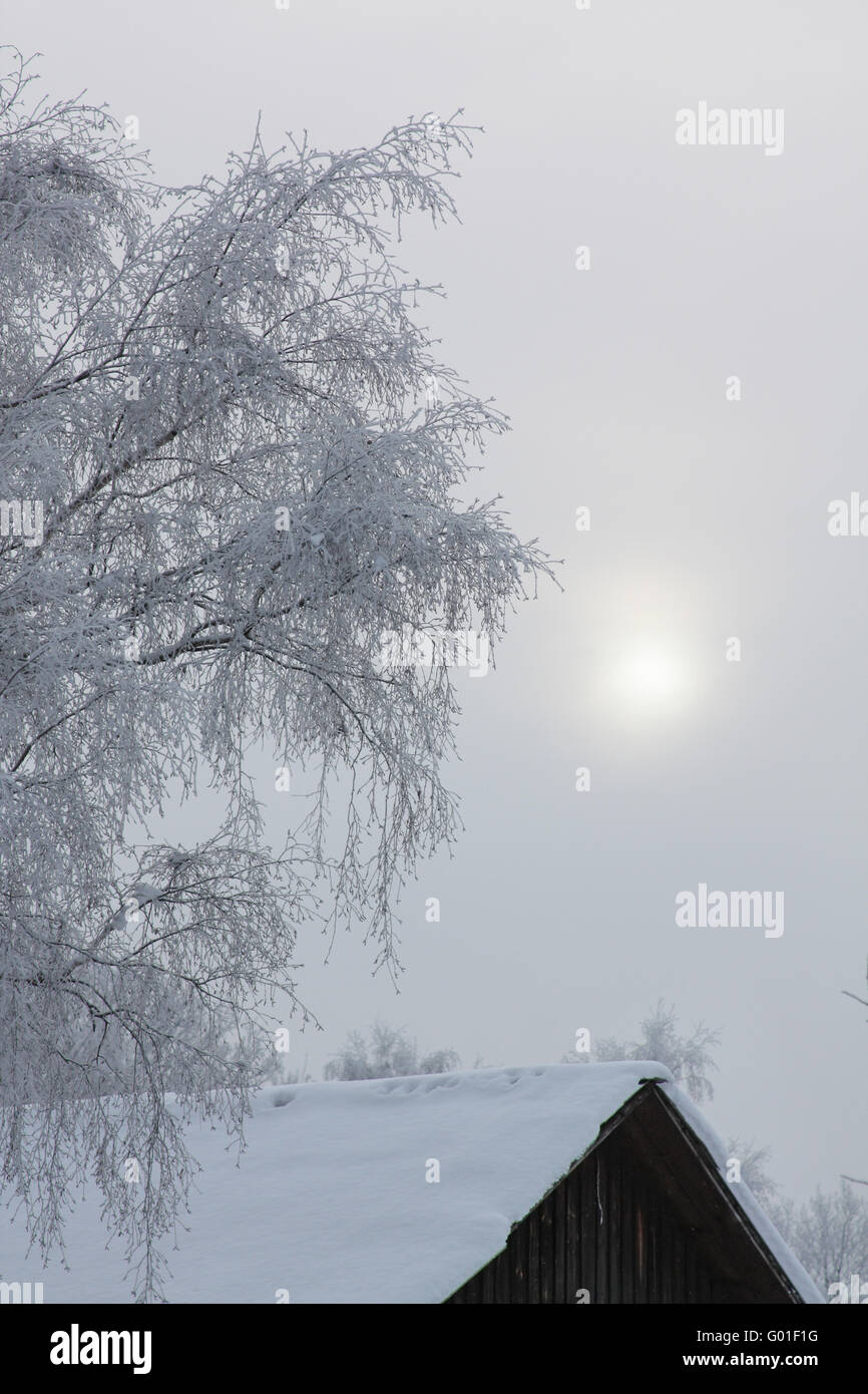 Winter in the village. Sun shines through the fog - Stock Image