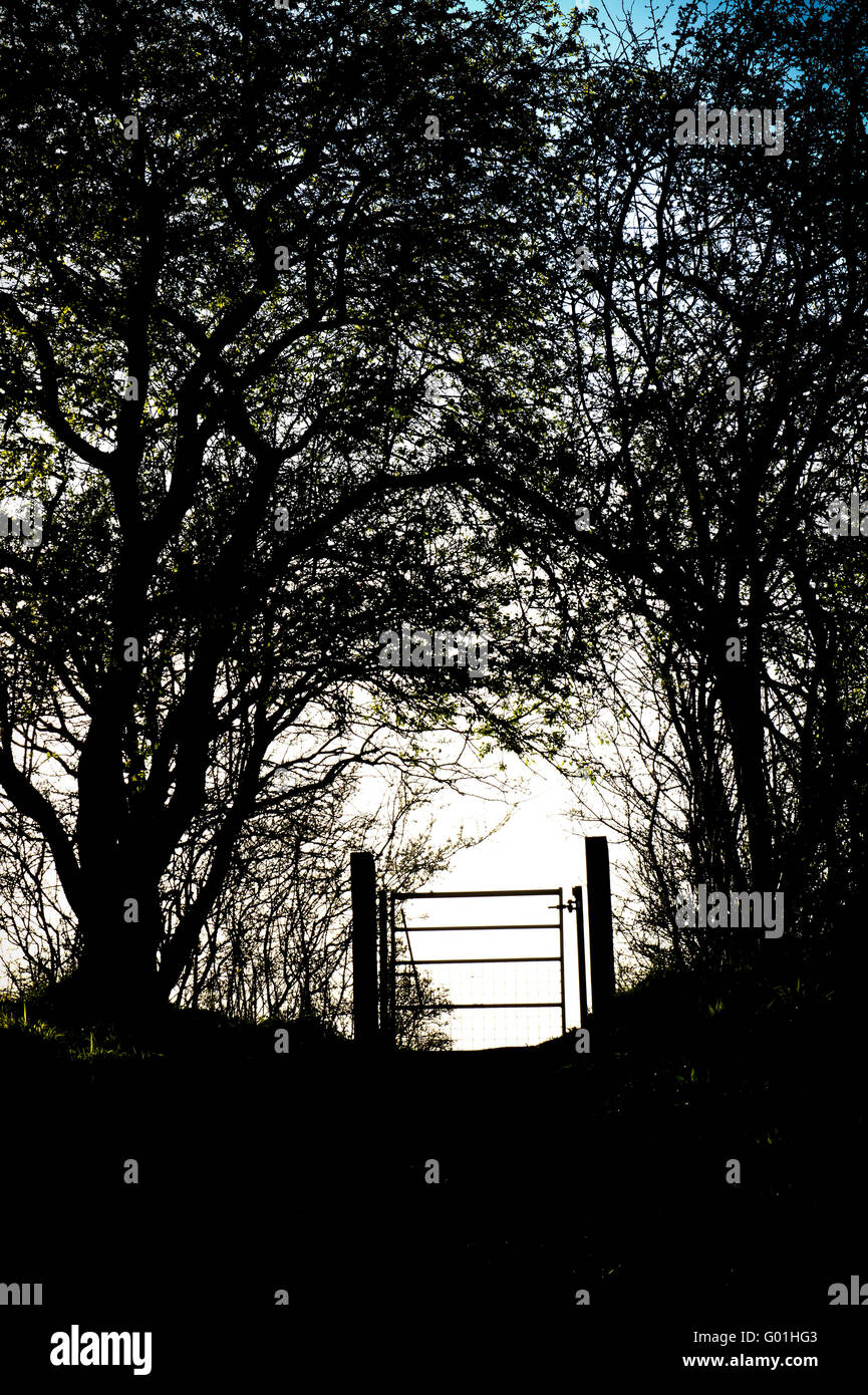 Footpath metal gate and hedgerow silhouette in the Oxfordshire countryside. England Stock Photo