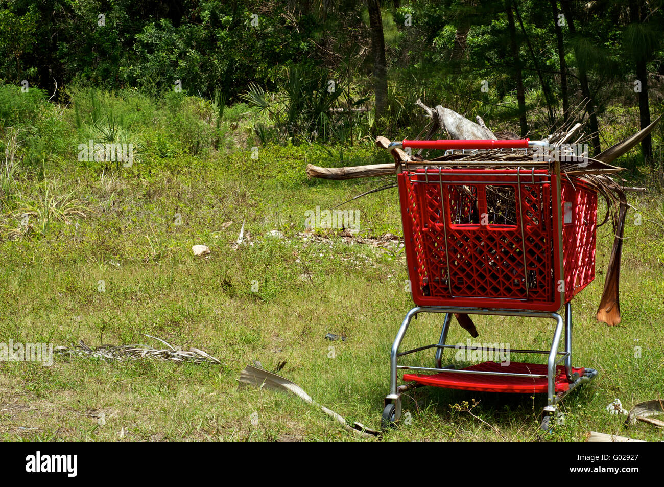 A bright red supermarket shopping cart is contrasted by the green of the wilderness. The cart is full of old dry - Stock Image