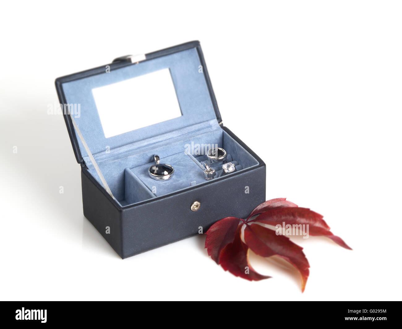 Jewel Case - Stock Image