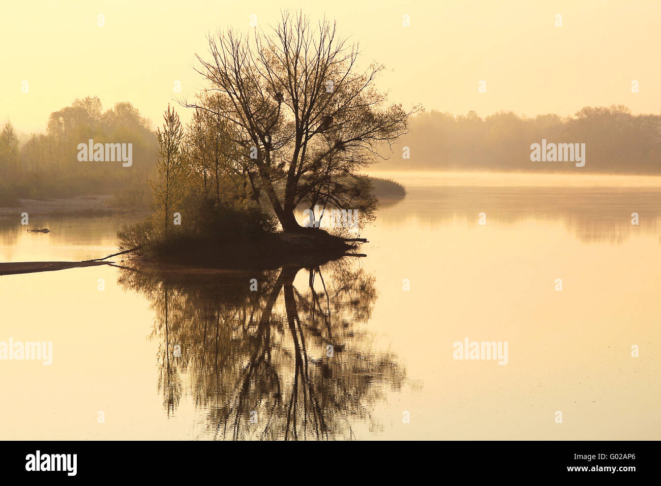 small island in river Loire, Burgundy, France - Stock Image