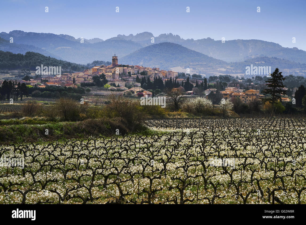 vineyards and the village of Sablet, Provence - Stock Image