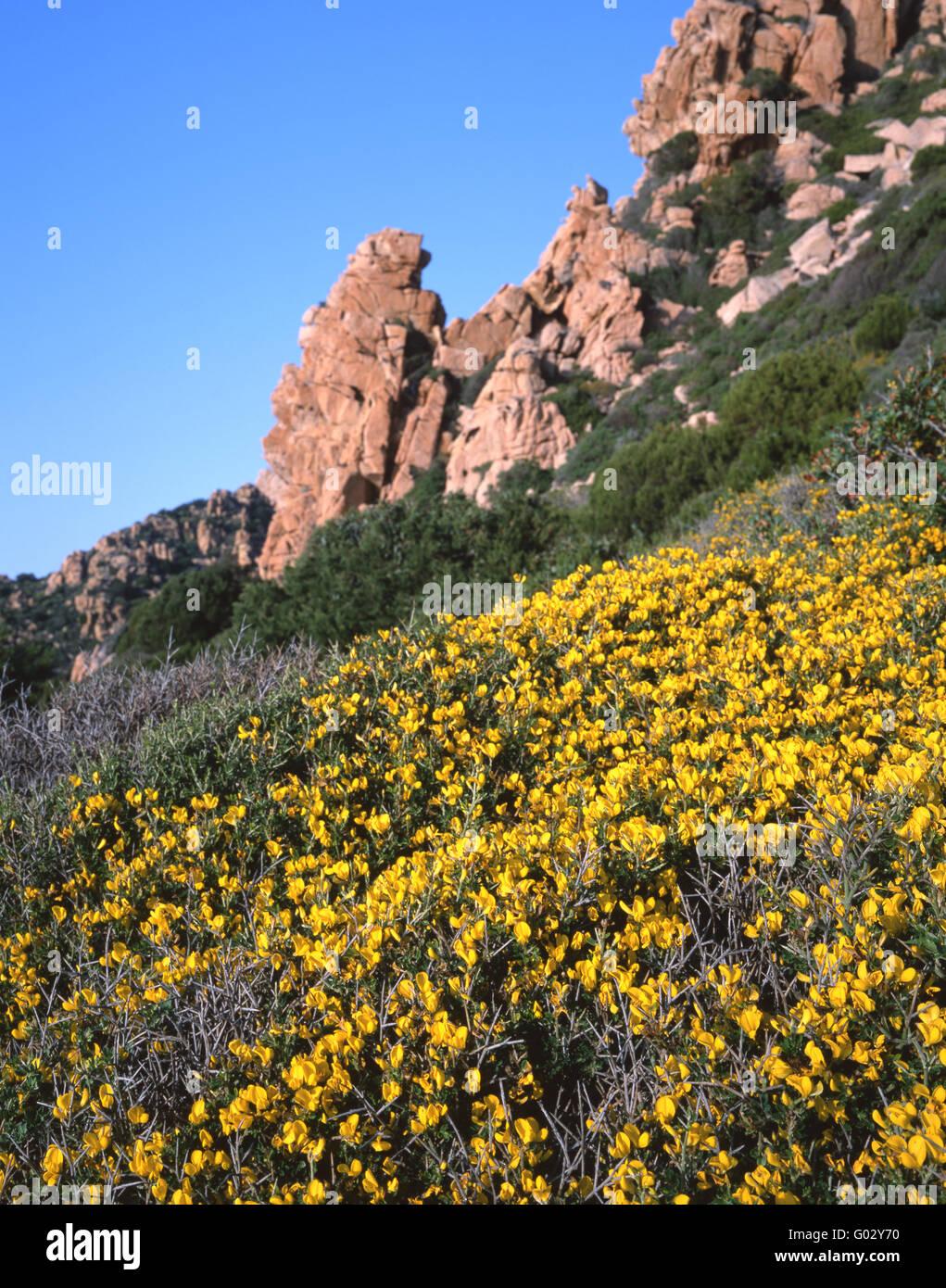 Costa Paradiso, Gallura (Sardinia) Stock Photo