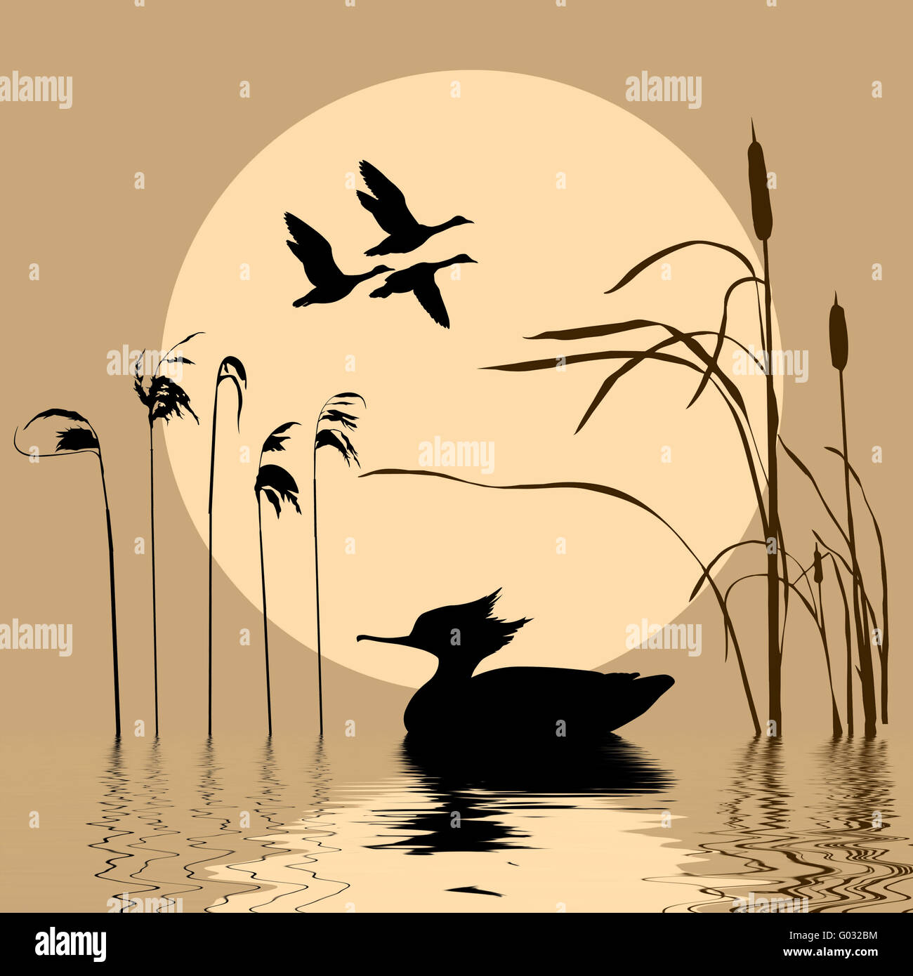 Flying Duck Painting Stock Photos & Flying Duck Painting Stock ...