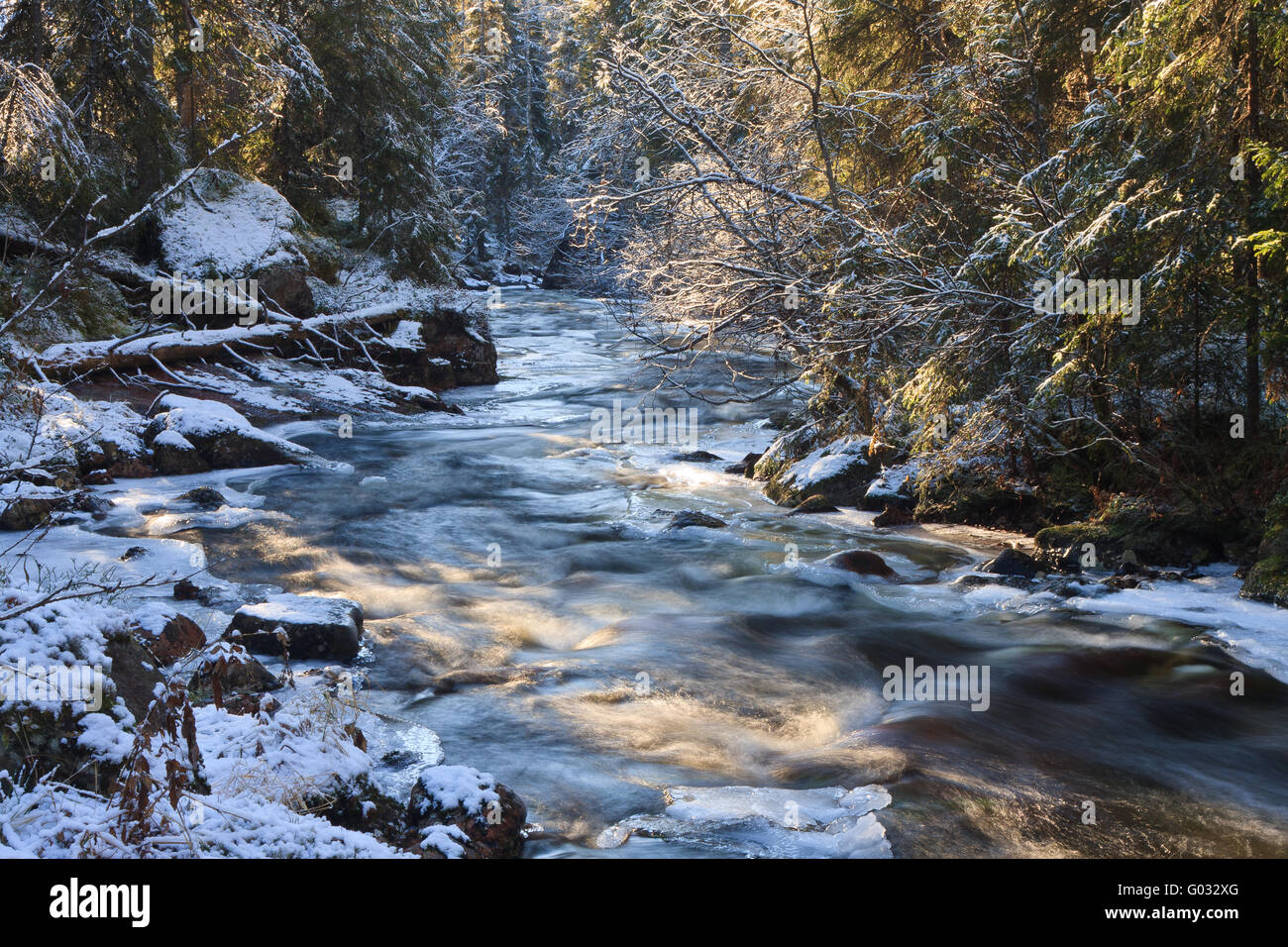 winterly stream in the forest - Stock Image