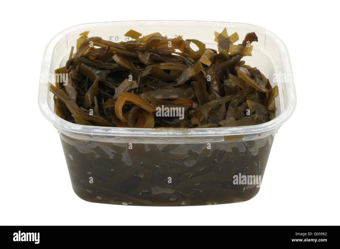 kelp salad in a plastic pot isolated on white back - Stock Image