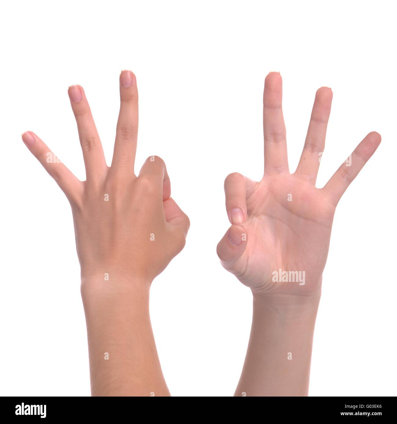 front and back woman hands showing OK sign (isolated on white background) Stock Photo