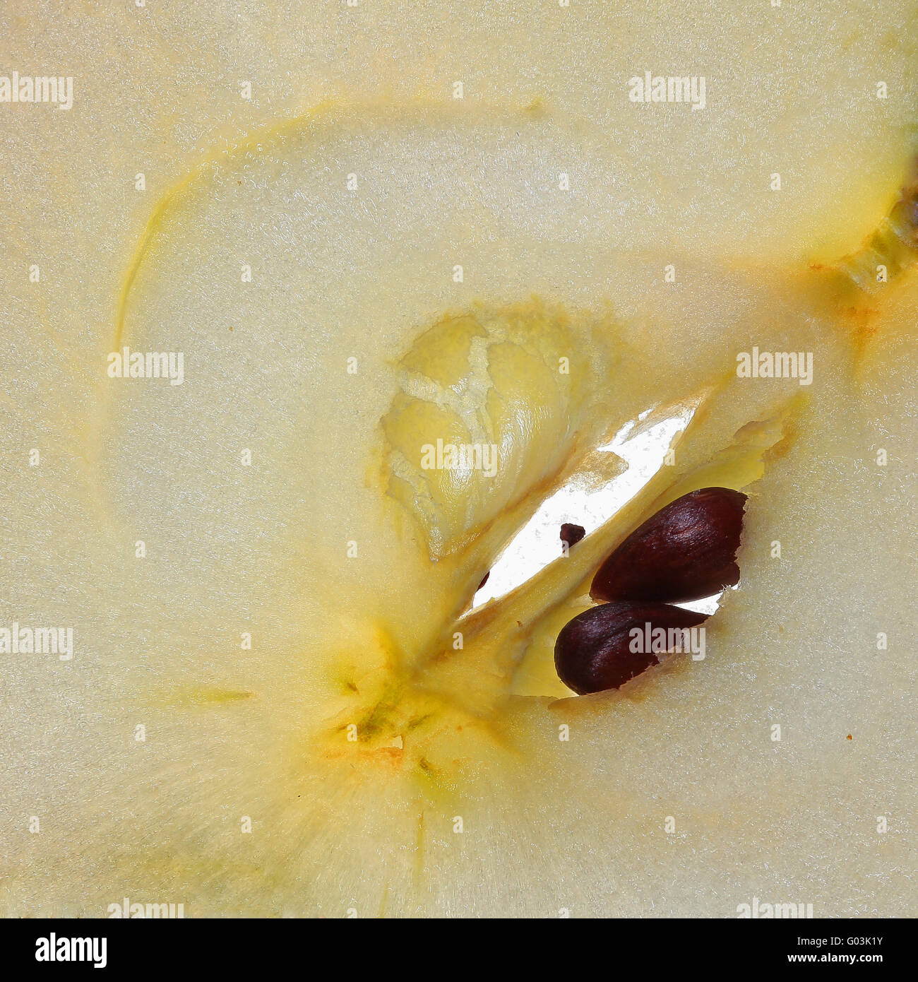 apple core - Stock Image