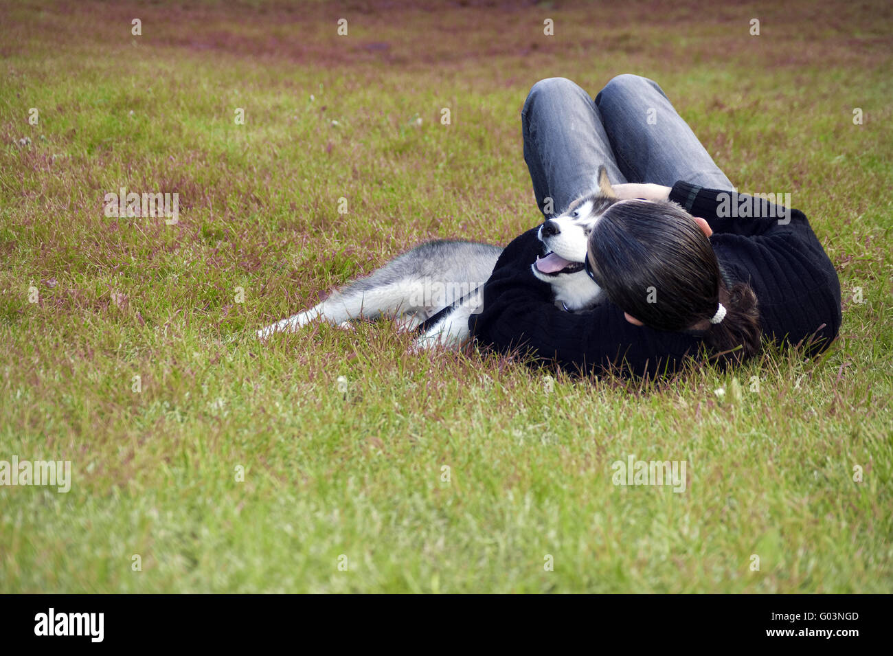 man are playing with his dog - Stock Image