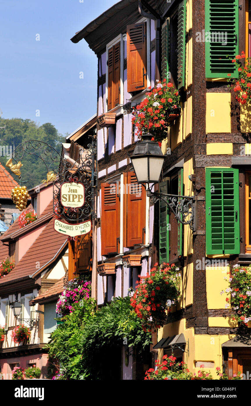 Half-timbered houses, old town, Grand Rue, Ribeauville, Alsace, France / half-timber house - Stock Image