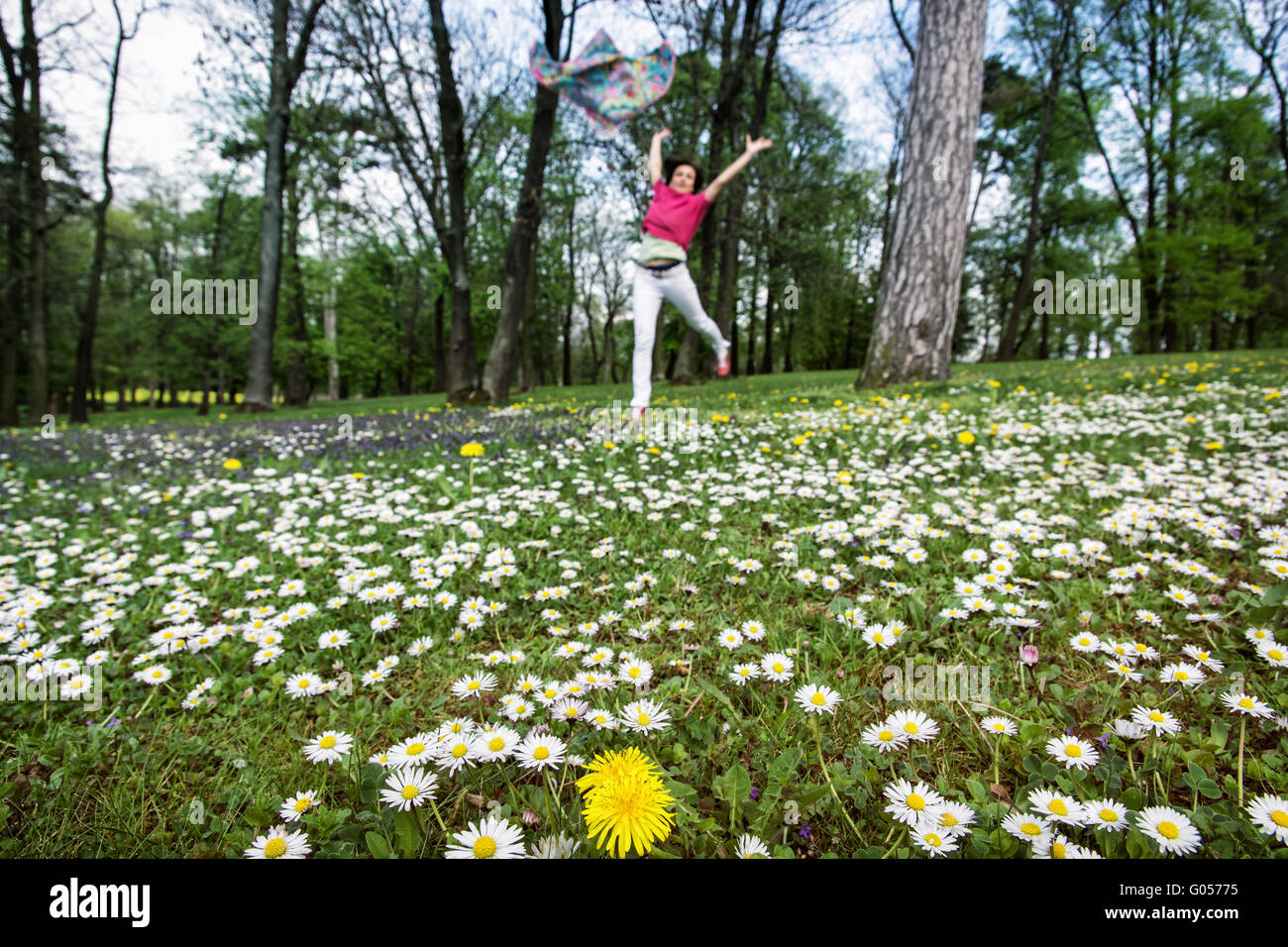 Crazy Daisies Stock Photos Crazy Daisies Stock Images Alamy