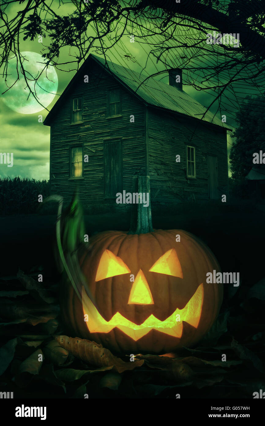 Halloween Theme Backdrop 10x6.5ft Polyester Photography Background Horror Night Haunted House Fence Flying Bats Black Cat Grinning Pumpkin Lamps Trick or Treat Party Greeting Card Kids Baby Shoot