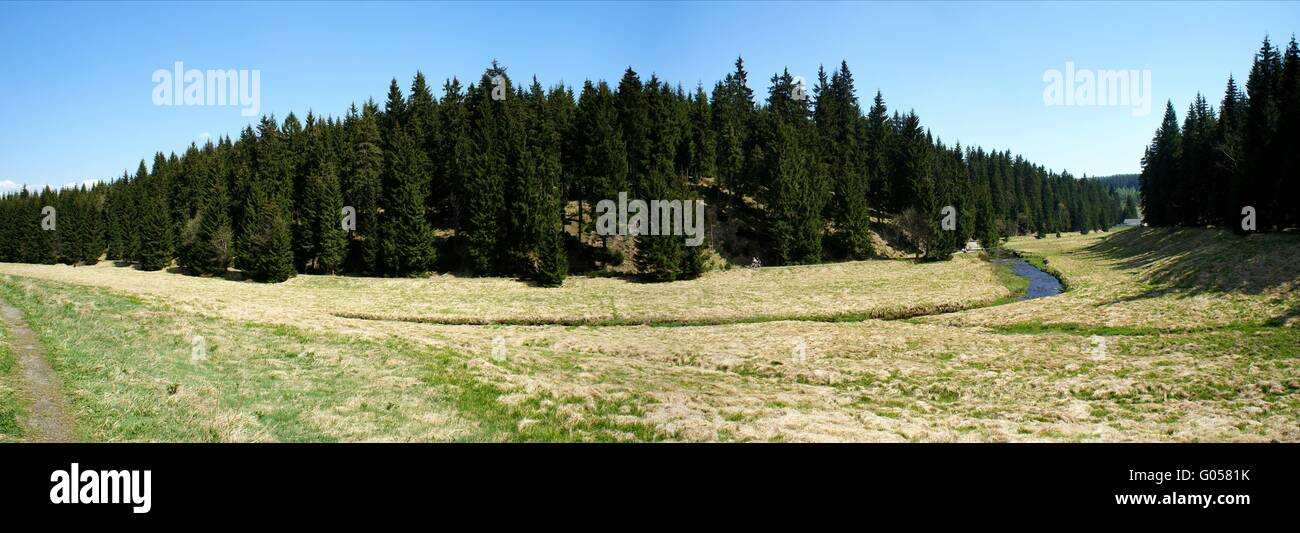 The valley of the Black Pockau in Erzgebirge - Stock Image