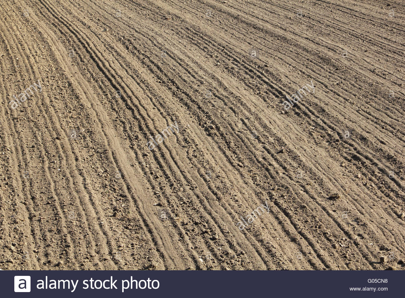 Furrows in early spring - Stock Image