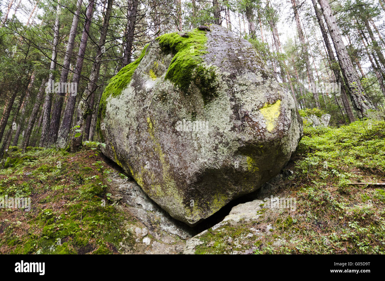 Rock near hiking trail - Stock Image