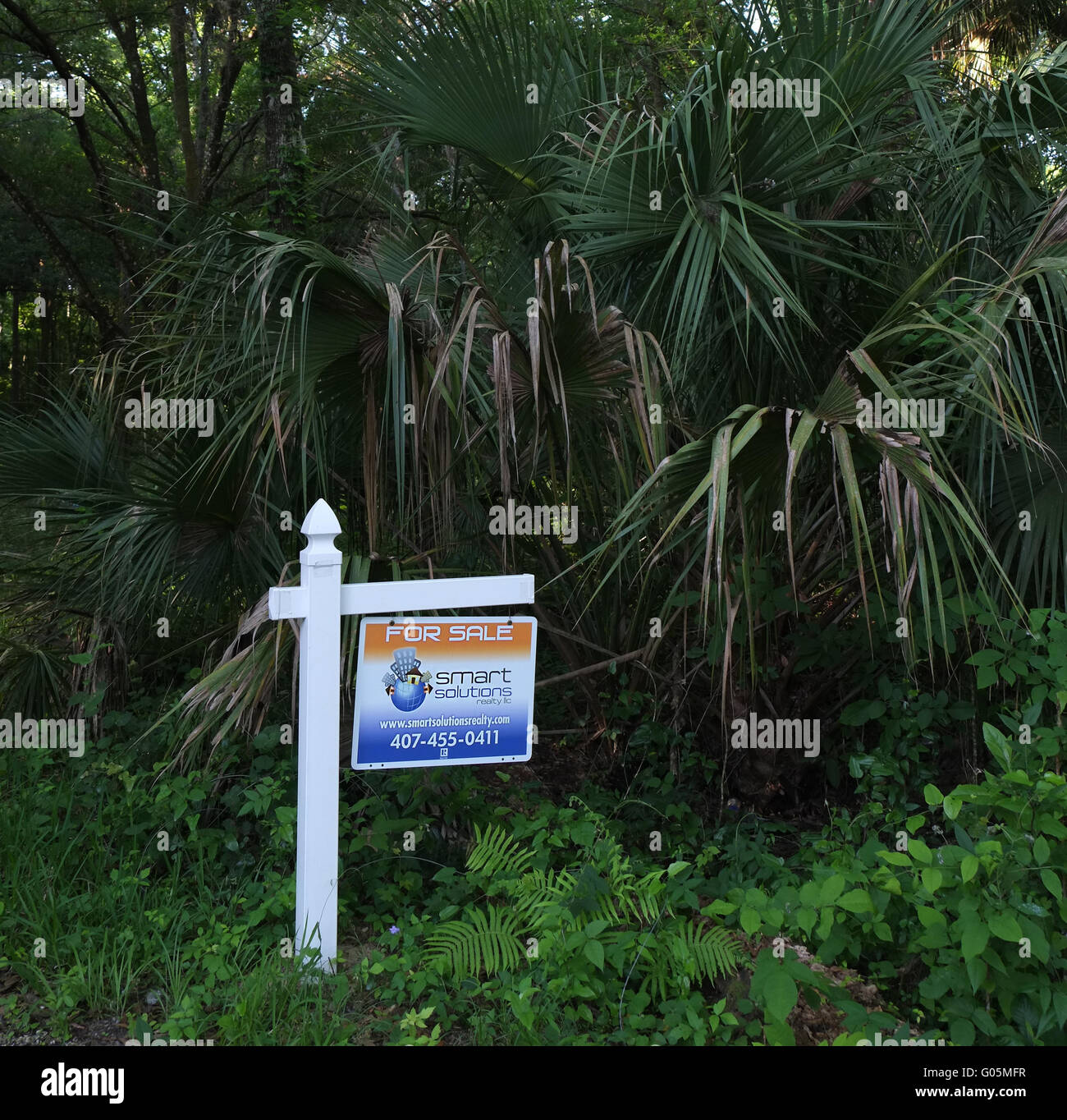 Undeveloped real estate for sale in Florida. April 2016 - Stock Image