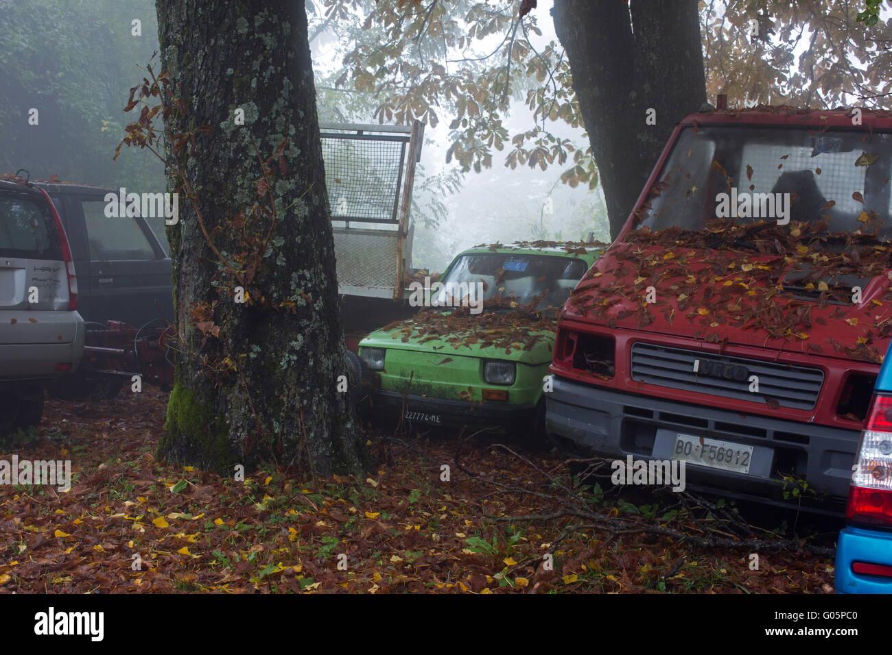 Abandoned cars - Stock Image