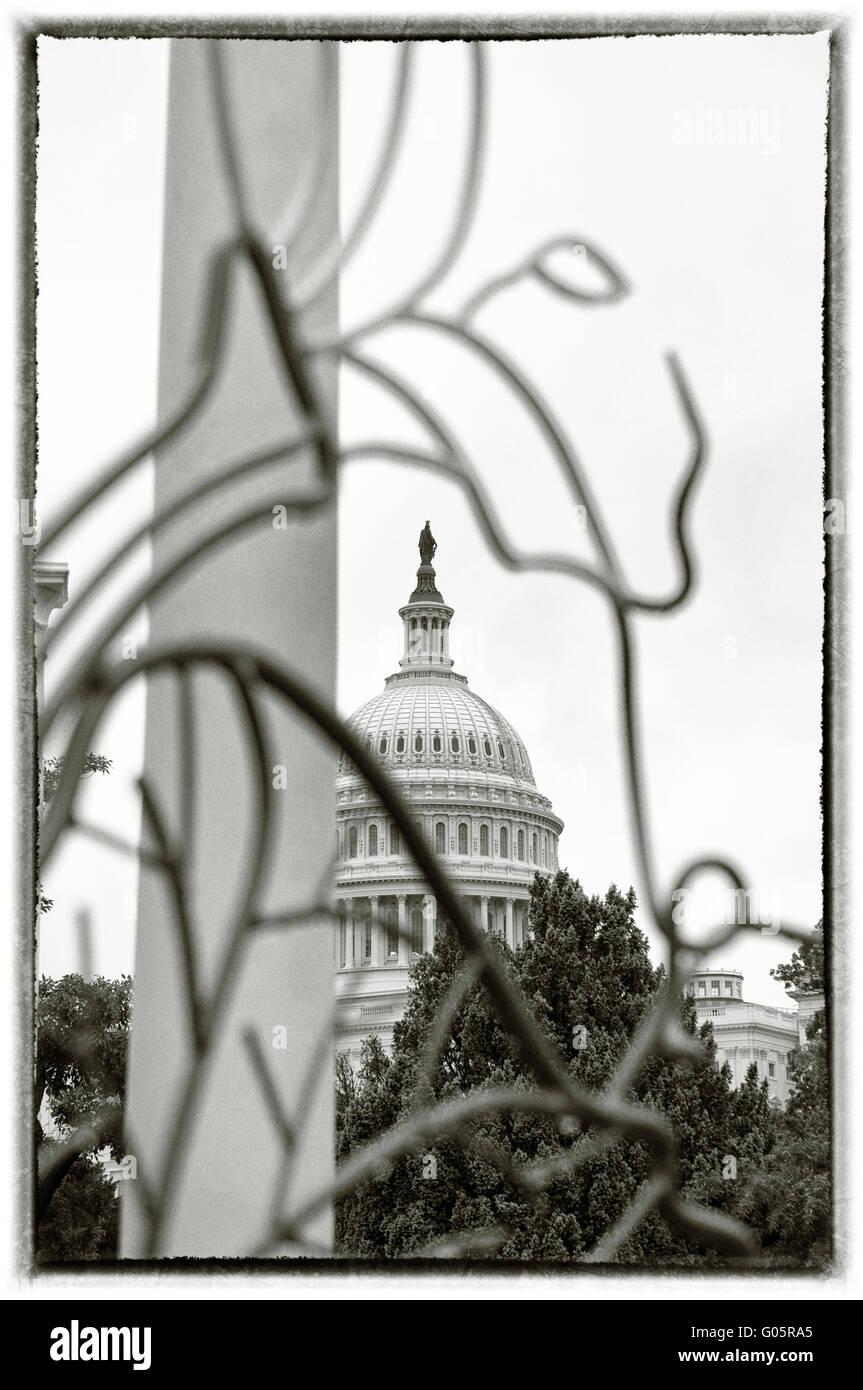 The U.S. Capitol dome. Washington, DC. USA - Stock Image