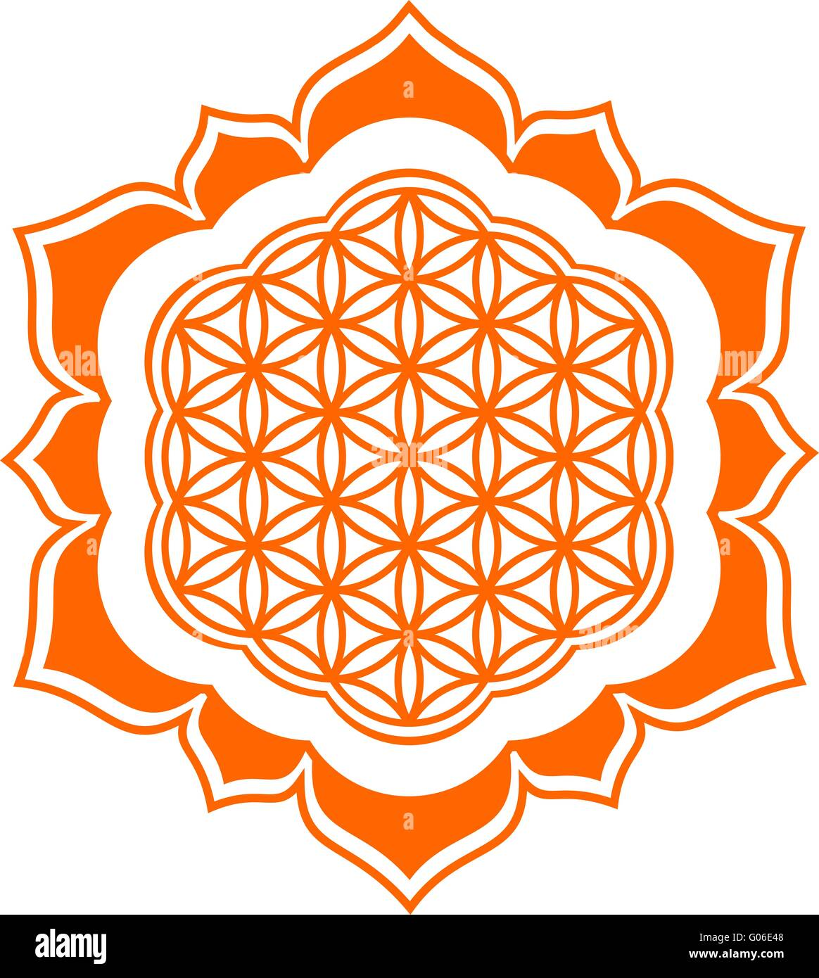 Flower of life - Lotus flower - Stock Image