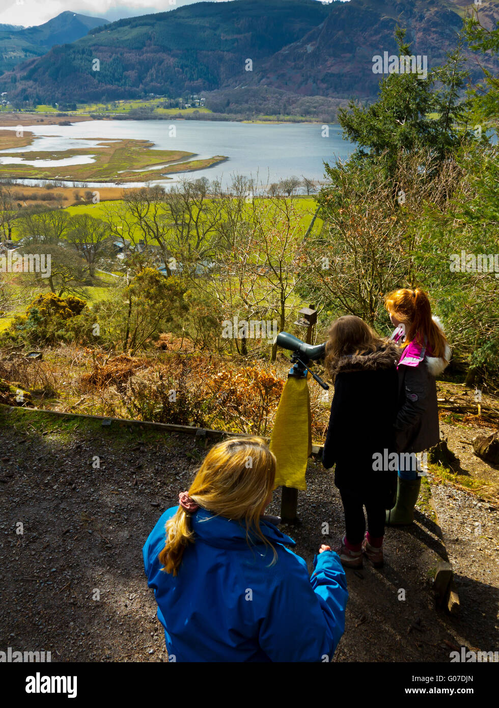 People watching ospreys with telescope from RSPB Osprey Viewing Station at Dodd Wood Bassenthwaite in Lake District - Stock Image