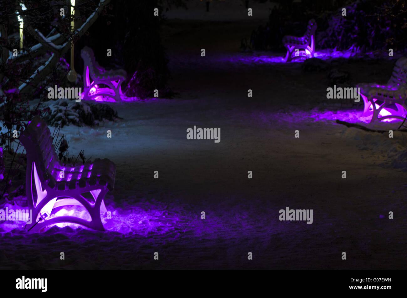 Winterlight - Light Objects in the Palm Garden Stock Photo