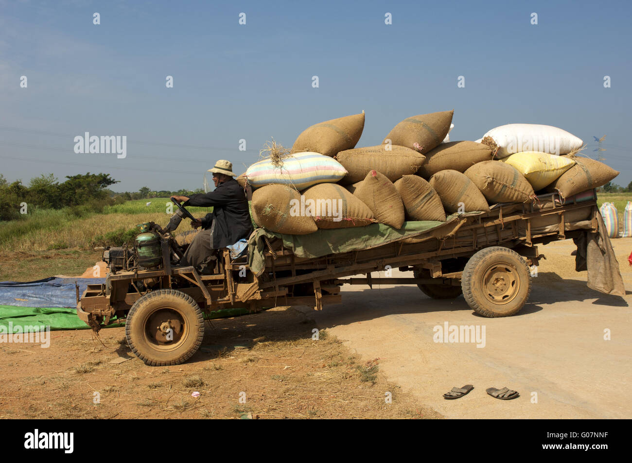 Transport of bulging rice bags on an archaic truck Stock Photo