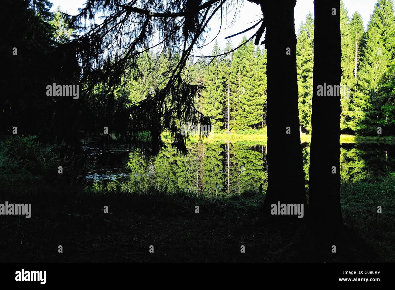 at a lonely idyllic Black Forest lake in Germany Stock Photo
